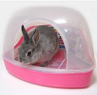 Как приучить кролика к лотку - туалету