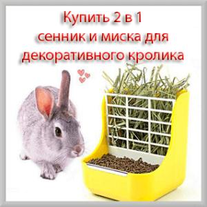 Купить 2 в 1 сенник и миска для декоративного кролика
