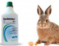 Байкокс для кроликов инструкция по применению